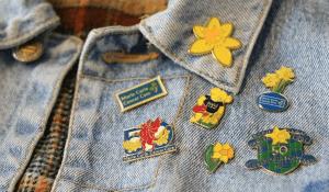 Great Daffodil Appeal